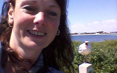 [:nl]Penguin Island[:en]Pe[:]